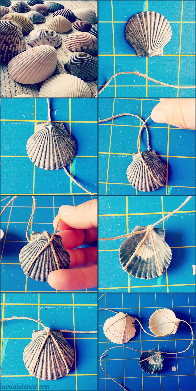 7.14.13-shells-smaller1