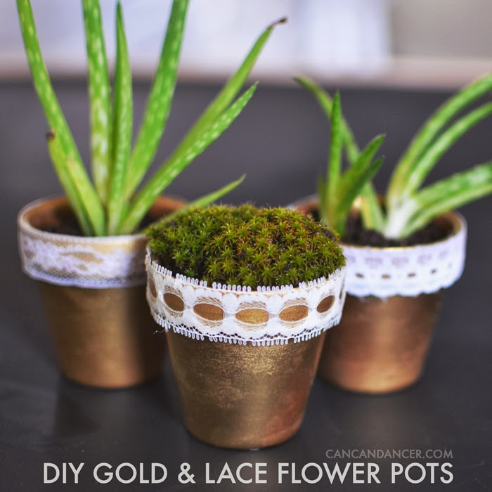 Can Can Dancer & DIY Gold \u0026 Lace Flower Pots | Can Can Dancer